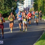 Bermuda Marathon Weekend Marathon and Half Marathon, January 14 2018-5843