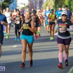 Bermuda Marathon Weekend Marathon and Half Marathon, January 14 2018-5960