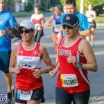 Bermuda Marathon Weekend Marathon and Half Marathon, January 14 2018-5978