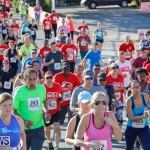 Butterfield & Vallis 5K Race Bermuda, January 21 2018-3964