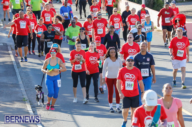 Butterfield-Vallis-5K-Race-Bermuda-January-21-2018-3993