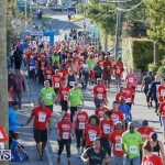 Butterfield & Vallis 5K Race Bermuda, January 21 2018-3997