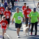 Butterfield & Vallis 5K Race Bermuda, January 21 2018-4019