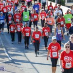Butterfield & Vallis 5K Race Bermuda, January 21 2018-4021