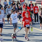 Butterfield & Vallis 5K Race Bermuda, January 21 2018-4092