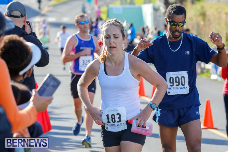 Butterfield-Vallis-5K-Race-Bermuda-January-21-2018-4356