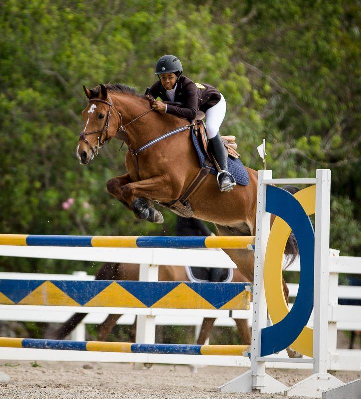 Equestrian Bermuda Jan 2 2018 (2)