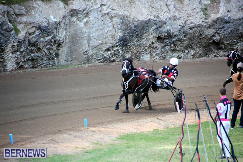 Harness-Pony-Racing-Bermuda-Jan-17-2018-1