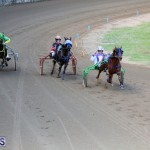 Harness Pony Racing Bermuda Jan 17 2018 (11)