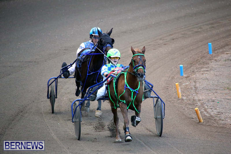 Harness-Pony-Racing-Bermuda-Jan-17-2018-14