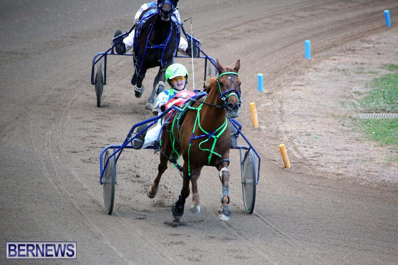 Harness-Pony-Racing-Bermuda-Jan-17-2018-17