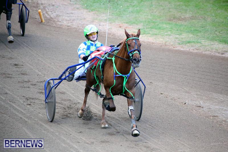 Harness-Pony-Racing-Bermuda-Jan-17-2018-18