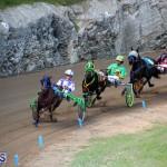 Harness Pony Racing Bermuda Jan 17 2018 (8)