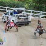 Harness Pony Racing Bermuda, January 28 2018-6303
