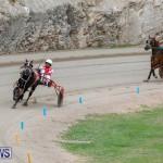 Harness Pony Racing Bermuda, January 28 2018-6308