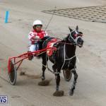 Harness Pony Racing Bermuda, January 28 2018-6314