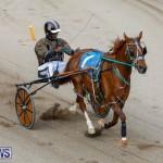 Harness Pony Racing Bermuda, January 28 2018-6316