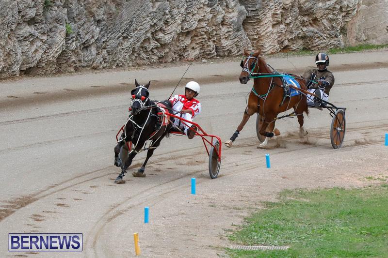 Harness-Pony-Racing-Bermuda-January-28-2018-6319