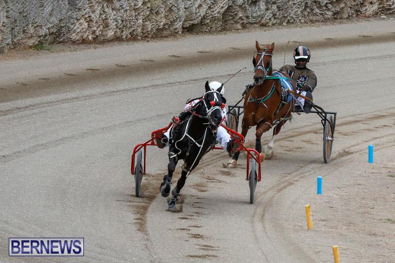 Harness-Pony-Racing-Bermuda-January-28-2018-6321