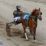 Harness Pony Racing Bermuda, January 28 2018-6329