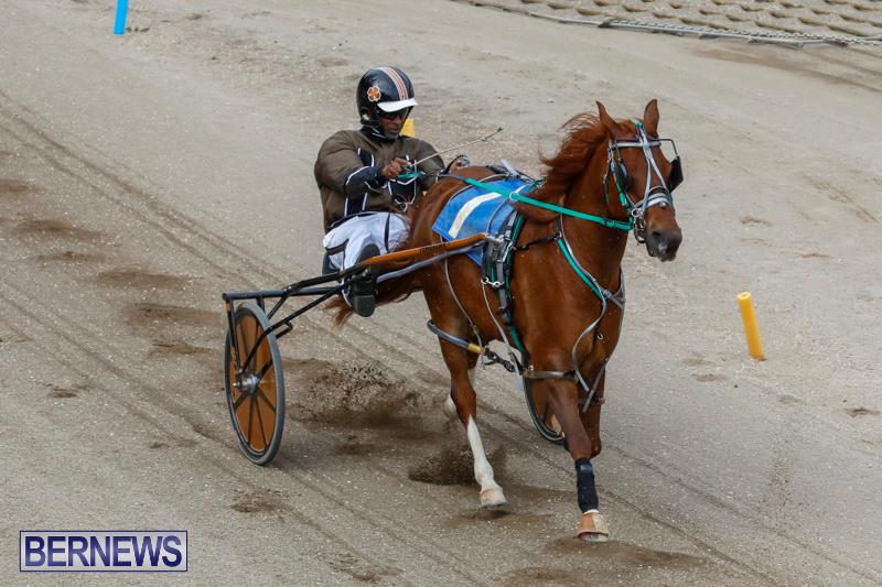 Harness-Pony-Racing-Bermuda-January-28-2018-6329