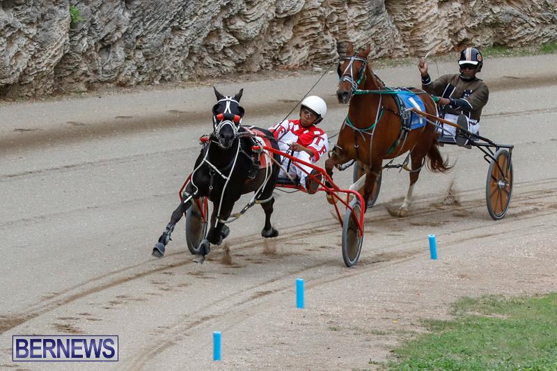 Harness-Pony-Racing-Bermuda-January-28-2018-6336