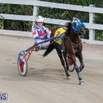 Harness Pony Racing Bermuda, January 28 2018-6347