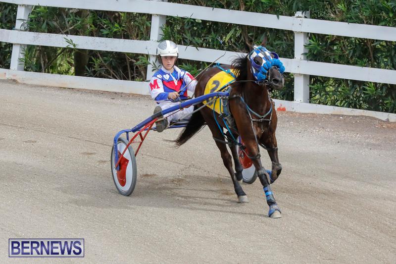 Harness-Pony-Racing-Bermuda-January-28-2018-6347