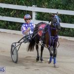 Harness Pony Racing Bermuda, January 28 2018-6350