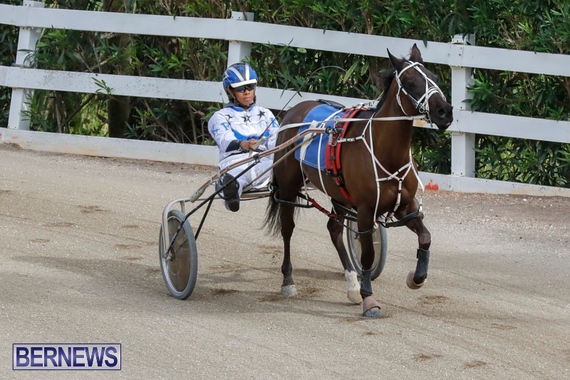 Harness-Pony-Racing-Bermuda-January-28-2018-6352