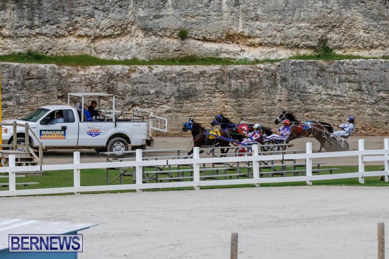 Harness-Pony-Racing-Bermuda-January-28-2018-6374