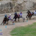 Harness Pony Racing Bermuda, January 28 2018-6377