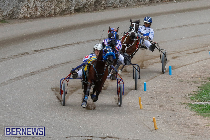 Harness-Pony-Racing-Bermuda-January-28-2018-6379