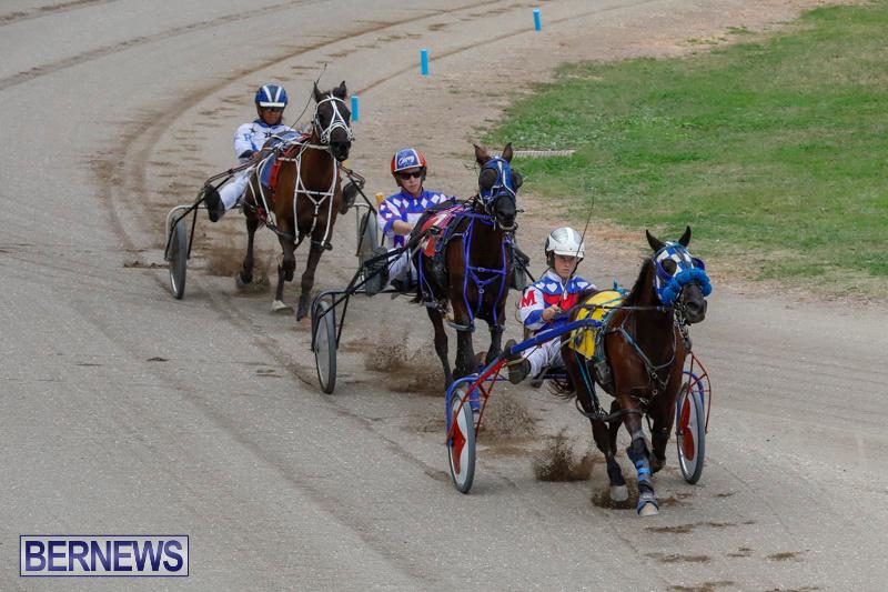 Harness-Pony-Racing-Bermuda-January-28-2018-6384