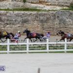 Harness Pony Racing Bermuda, January 28 2018-6395