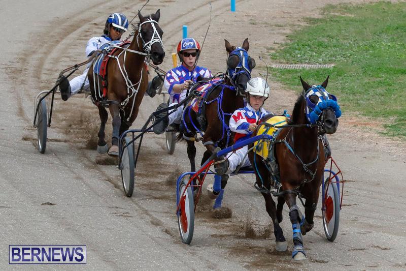 Harness-Pony-Racing-Bermuda-January-28-2018-6405