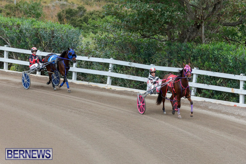 Harness-Pony-Racing-Bermuda-January-28-2018-6431