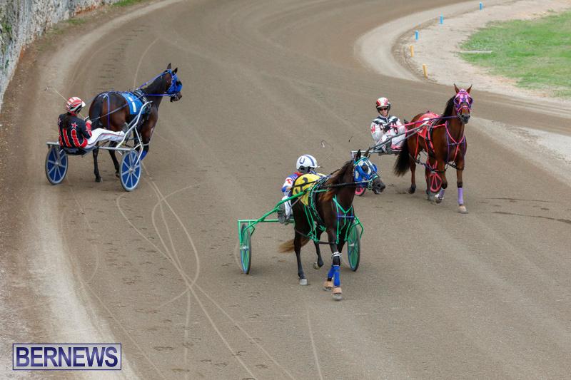 Harness-Pony-Racing-Bermuda-January-28-2018-6438