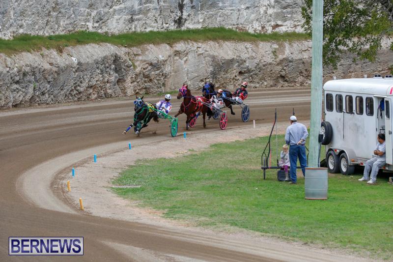 Harness-Pony-Racing-Bermuda-January-28-2018-6458