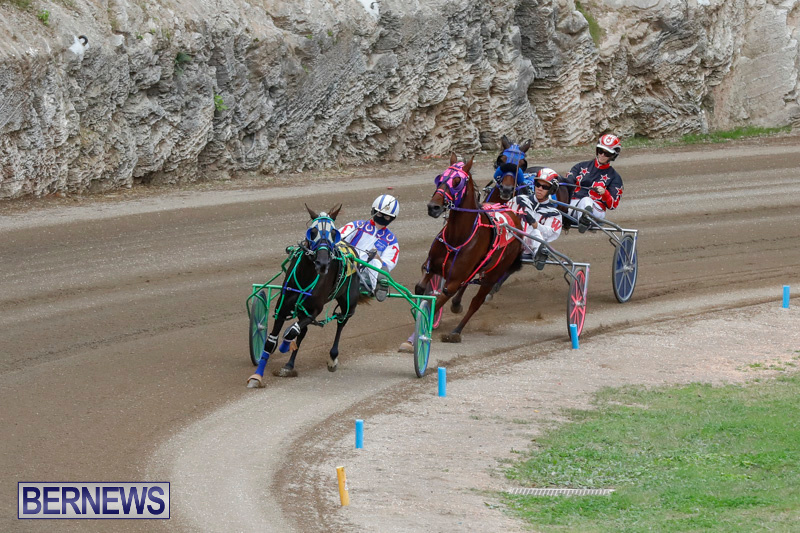 Harness-Pony-Racing-Bermuda-January-28-2018-6460