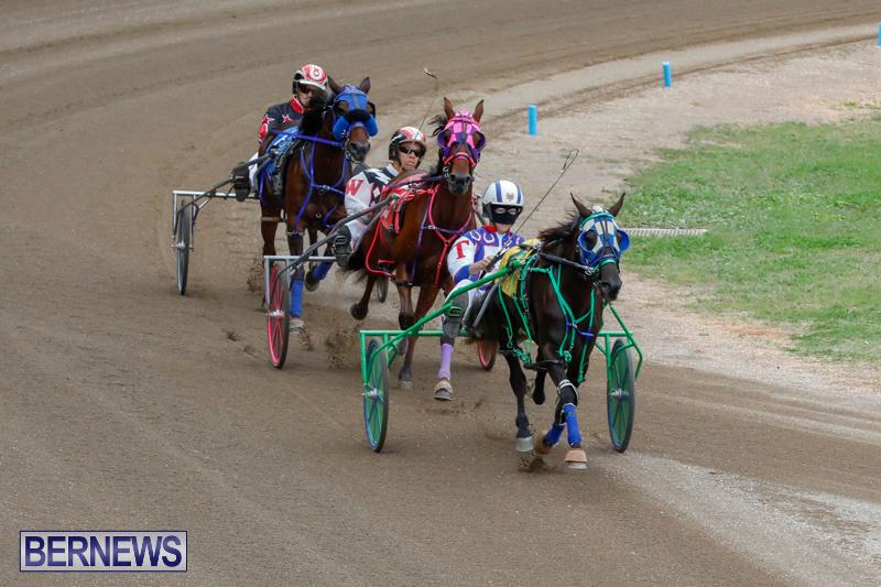 Harness-Pony-Racing-Bermuda-January-28-2018-6463