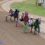 Harness Pony Racing Bermuda, January 28 2018-6466