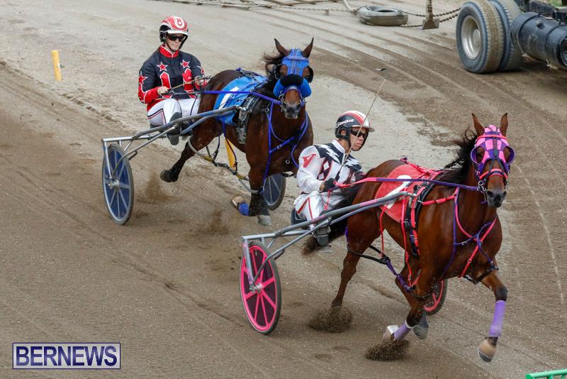 Harness-Pony-Racing-Bermuda-January-28-2018-6467