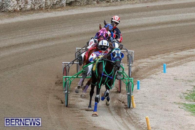 Harness-Pony-Racing-Bermuda-January-28-2018-6475
