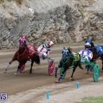 Harness Pony Racing Bermuda, January 28 2018-6489