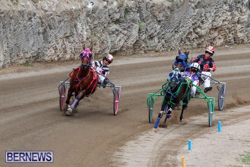 Harness-Pony-Racing-Bermuda-January-28-2018-6491