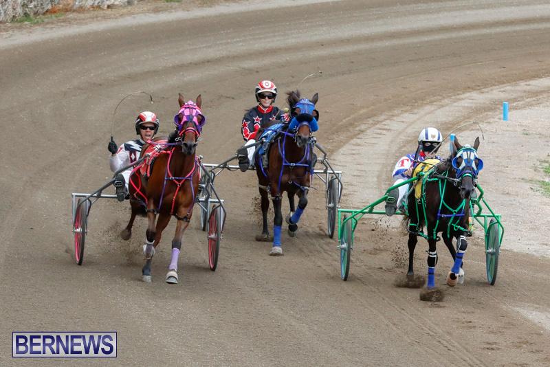 Harness-Pony-Racing-Bermuda-January-28-2018-6496