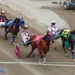 Harness Pony Racing Bermuda, January 28 2018-6503