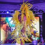 Intense Bermuda Heroes Weekend BHW The Launch, January 14 2018-9436