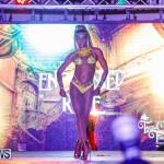 Intense Bermuda Heroes Weekend BHW The Launch, January 14 2018-9478